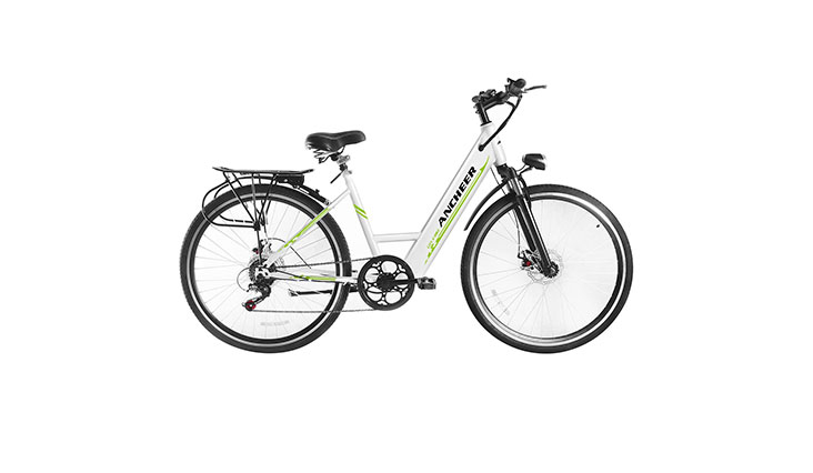 Top 10 Best Affordable Electric Bikes For Adults In Review