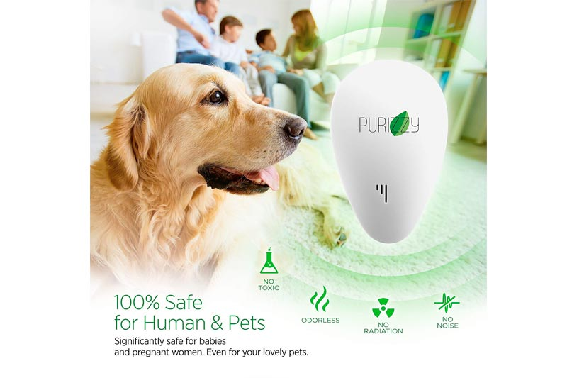 Ultrasonic Pest Repeller - Mosquito Repeller - Upgrade 2018 Insect Bug Repellent Indoor - Electromagnetic Plug in Pest Control - Electronic Repel Mice Rat - Reject Flea Spider - No Mouse Trap