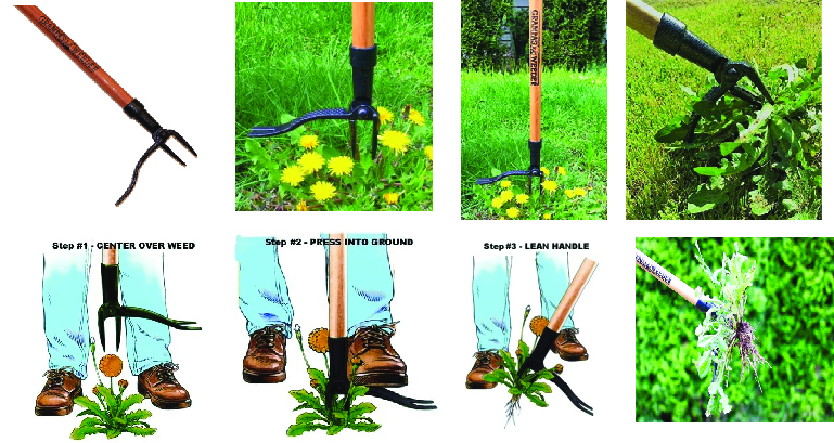 Grampa's Weeder (CW-01) - The Original Stand Up Weed Remover Tool